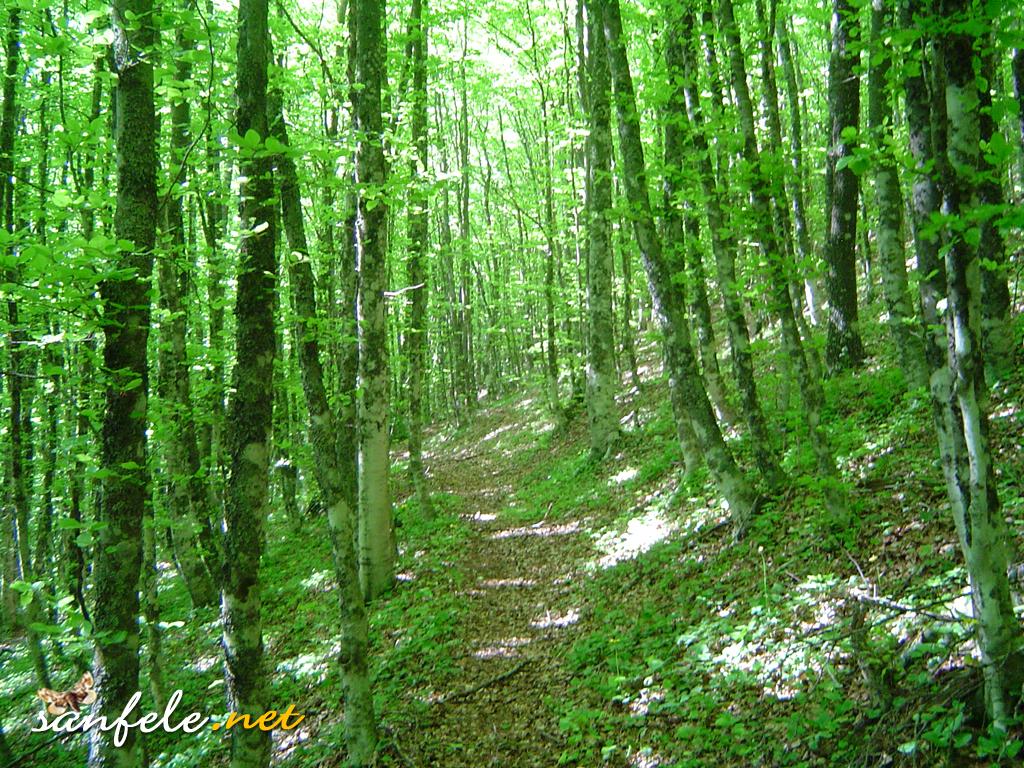 panorama_natura9